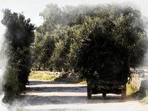 在一条国家车道的典型的拖拉机在意大利乡下 免版税库存图片