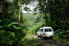 在一条土路的车通过密林在Raiatea,塔希提岛 库存照片