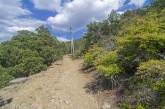 在一条土路附近的电定向塔在克里米亚半岛山 库存图片