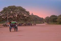 在一条多灰尘的路的马推车在寺庙区域在Bagan缅甸 图库摄影