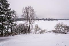 在一条大河的美好的冬天风景 免版税库存照片