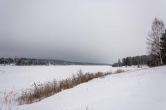 在一条大河的美好的冬天风景 免版税库存图片