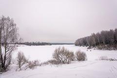 在一条大河的美好的冬天风景 库存照片