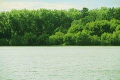 在一条宽河附近的美好的风景 免版税库存图片