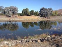 在一条寂静的小河的树反射 图库摄影