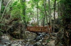 在一条小河的一个小木桥在对Caledonia瀑布的一途中在Platres附近 图库摄影