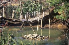 在一条小河的一座走的桥梁在西维吉尼亚 免版税库存图片