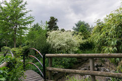 在一条小河的一座走道桥梁在公园 库存图片