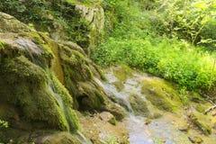 在一条小河的小瀑布在山森林里 库存图片