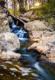 在一条小河的小瀑布在巨大秋天停放,弗吉尼亚 免版税库存图片