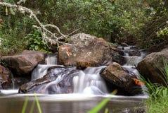 在一条小河的急流在安地斯山的山 库存照片