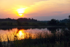 在一条小河的日落 免版税库存照片