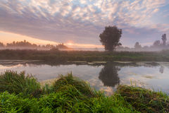 在一条小河的早晨薄雾 图库摄影