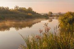在一条小河的有雾的日出 免版税库存图片