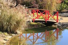 在一条小河的桥梁与蒲苇 图库摄影