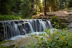 在一条小河的瀑布在一个夏天早晨 图库摄影