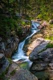 在一条小河的瀑布在高Tatras国家公园 免版税图库摄影