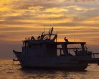 在一条小船的鹈鹕在日落 库存照片
