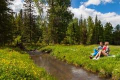 在一条山河的河岸的一顿野餐有绿草和黄色花的以针叶树和蓝色为背景 免版税库存图片