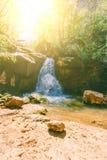 在一条山河的瀑布在森林里在一个芳香迷人的春日 免版税图库摄影