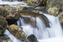 在一条岩石小河的美丽的小瀑布 免版税库存照片