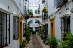 在一条平静的风景街道上的传统住宅建筑学 免版税库存照片