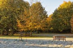 在一条庭院长凳的Fronst在秋天公园风景 免版税库存图片