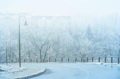 在一条弯曲的路上在冬天 库存图片