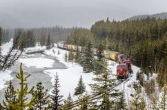在一条弯曲的轨道的货物火车在一个降雪的冬日 免版税图库摄影