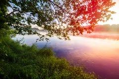 在一条有薄雾的有雾的河的夏天日出,风景 库存照片