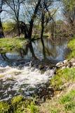 在一条森林河的小瀑布春天 免版税库存照片