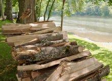 在一条河旁边的Stavked木头在夏天 免版税图库摄影