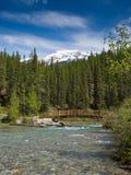 在一条河的一座桥梁山的 免版税库存图片