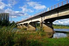 在一条河的典型的汽车桥梁在智利 免版税库存图片