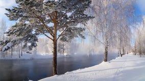 在一条河的冬天风景有霜的森林的,俄罗斯,乌拉尔 免版税库存照片