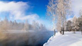 在一条河的冬天风景有霜的森林的,俄罗斯,乌拉尔 免版税库存图片