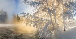 在一条河的冬天风景有霜的森林的,俄罗斯,乌拉尔 免版税图库摄影