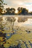 在一条河的日出有在水的薄雾的 免版税库存图片