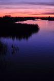 在一条河的美好的五颜六色的黄昏有芦苇和驳船剪影的  免版税库存照片