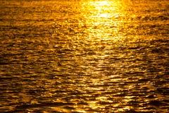 在一条河的金黄日落自然的 免版税图库摄影