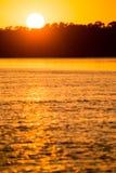 在一条河的金黄日落自然的 库存图片