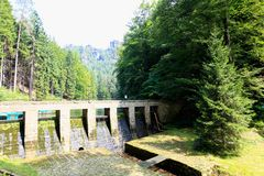 在一条河的水坝在森林里 免版税库存图片