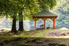 在一条河附近的野餐区在森林里 库存图片