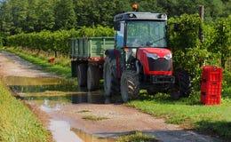 在一条泥泞的乡下公路的一台拖拉机在葡萄收获期间在9月 库存照片