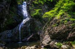 在一条生苔小河的瀑布 库存照片