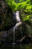 在一条生苔小河的瀑布 免版税库存图片