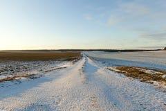 在一条积雪的路的车轮痕迹 库存照片