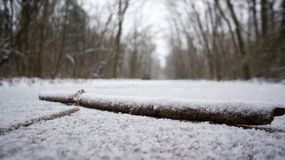在一条积雪的道路的棍子 库存图片