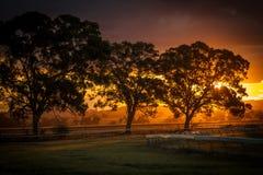 在一条空的跑道的日落在Gulgong NSW澳大利亚 免版税库存图片