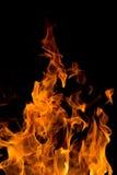 在一条第二龙的4000ths的火在火焰的 库存图片